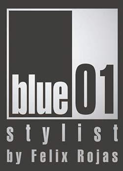 Blue 01 Stylist