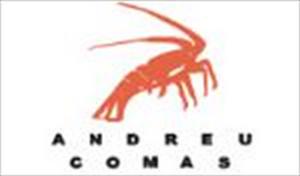 Andreu Comas
