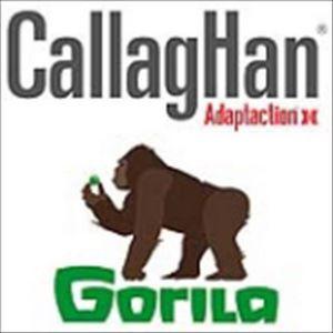 CALLAGHAN & GORILA