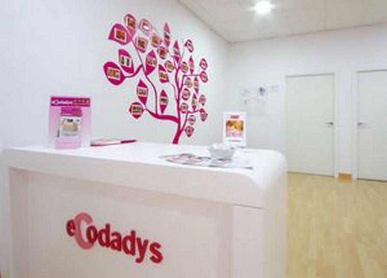 Ecodadys cumple siete años