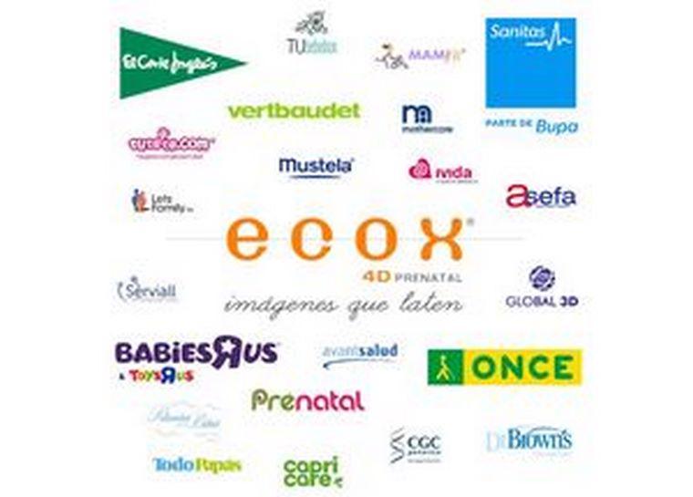 Ecox. El valor de la marca y sus alianzas estratégicas