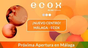 Apertura de ECOX4D-5D en Málaga