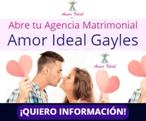 Amor Ideal Gayles presenta nuevas formulas de negocio para duplicar resultados en 2019
